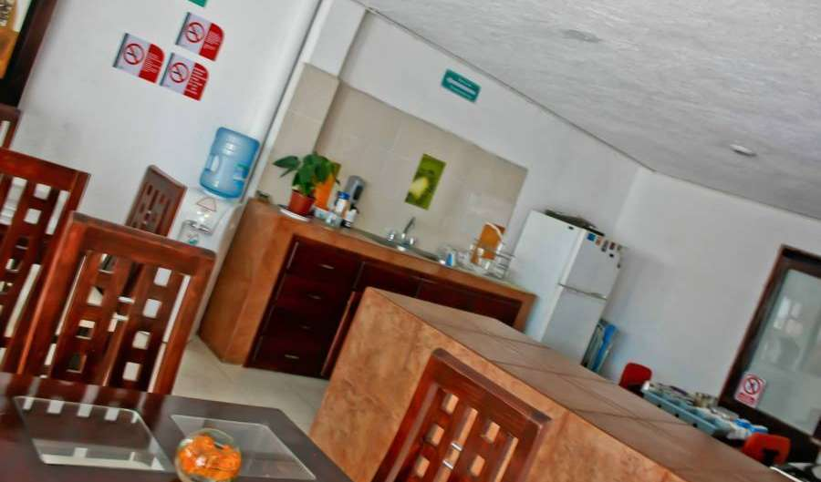 Book hotels and hostels now in Cholula